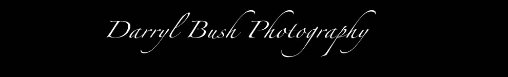 DARRYL BUSH PHOTOGRAPHY